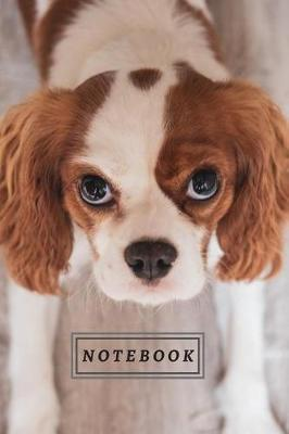 Notebook by Labgang Publications