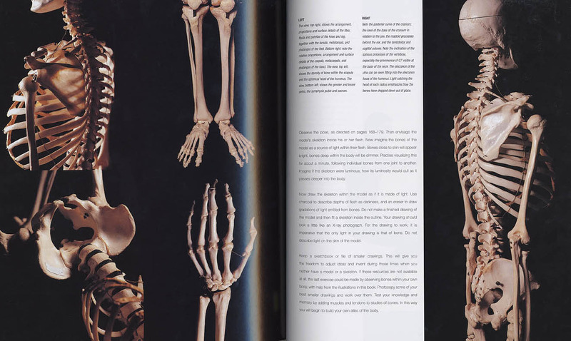 Anatomy For The Artist Sarah Simblet Book In Stock Buy Now