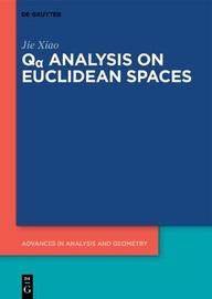 Q Analysis on Euclidean Spaces by Jie Xiao