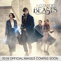 Fantastic Beasts 2 2019 Square Wall Calendar