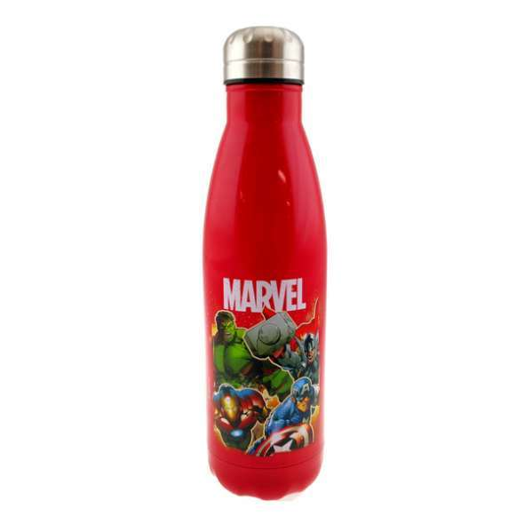 Marvel: Stainless Steel Drink Bottle - Group