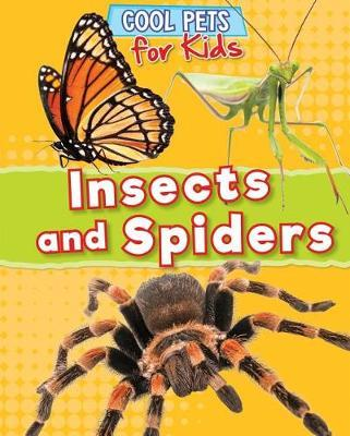 Insects and Spiders by Dawn Titmus