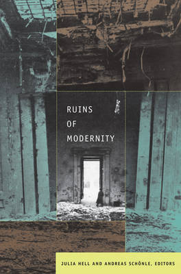 Ruins of Modernity image