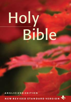 NRSV Popular Text Bible, NR530:T