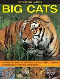 Exploring Nature: Big Cats by Rhonda Klevansky