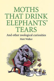 Moths That Drink Elephants' Tears: And Other Zoological Curiosities by Matt Walker image