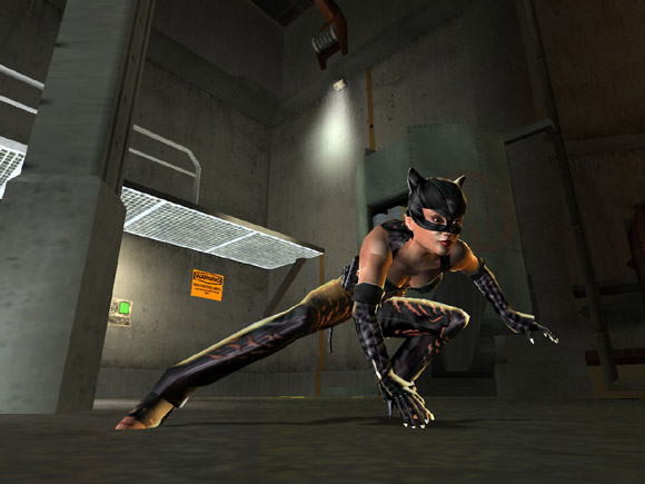 Catwoman for PlayStation 2 image