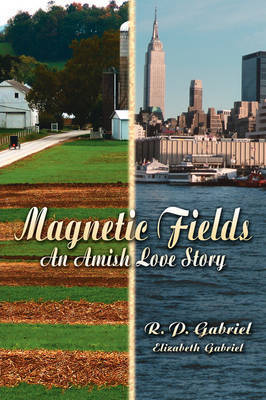 Magnetic Fields by R. P. Gabriel