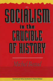 Socialism In The Crucible Of History by Michel Beaud image