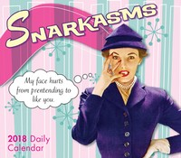 Snarkasms 2018 Box Calendar by Postmark Press
