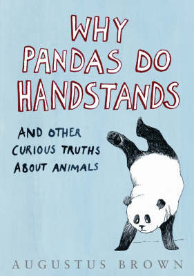 Why Pandas Do Handstands... by Augustus Brown image
