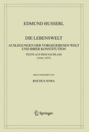 Die Lebenswelt: Auslegungen der Vorgegebenen Welt und Ihrer Konstitution by Edmund Husserl