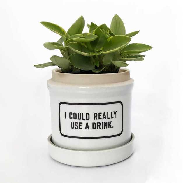 Brass Monkey: I Could Really Use a Drink Planter