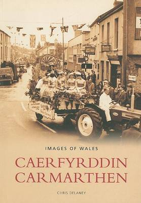 Carmarthen by Chris Delaney image