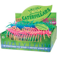 Stretchy Caterpillars - (Assorted Colours)