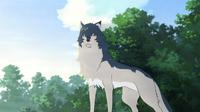 Wolf Children - Special Edition on DVD