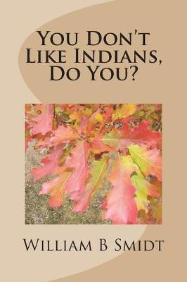 You Don't Like Indians, Do You? by William B Smidt