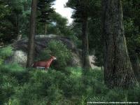 The Elder Scrolls IV: Oblivion for PC Games image