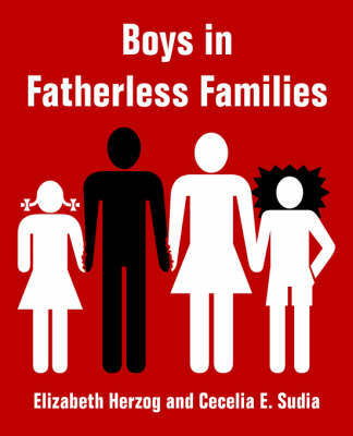 Boys in Fatherless Families by Elizabeth Herzog image
