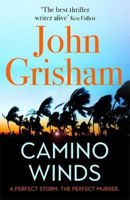 Camino Winds by John Grisham image