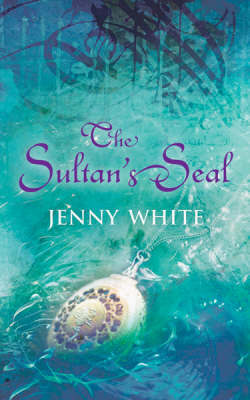 The Sultan's Seal by Jenny White image
