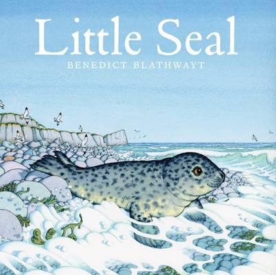Little Seal by Benedict Blathwayt