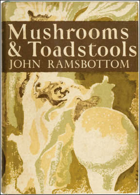 Mushrooms and Toadstools by John Ramsbottom