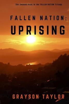Fallen Nation by Grayson Taylor image