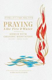 Praying Like Fire and Water by David H Sterne