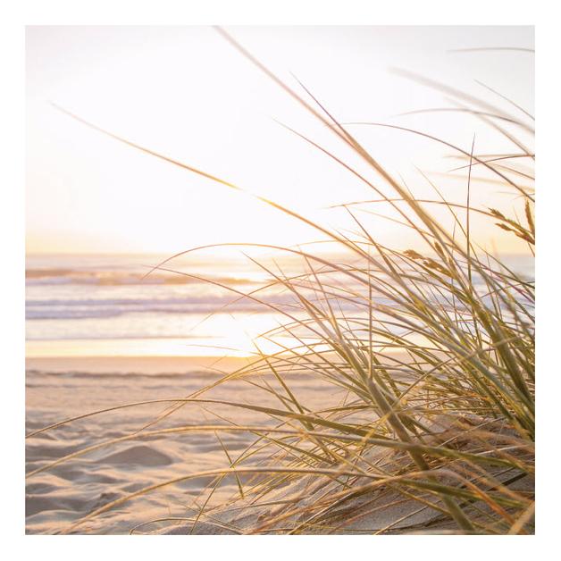 Habitat 101: Beach at Sunrise Canvas (80x80cm)