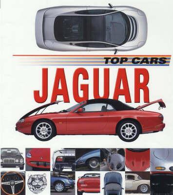 Jaguar by Lee Stacy
