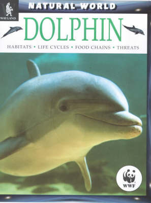 Dolphins by Nic Davies