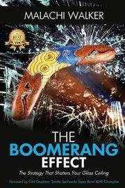 The Boomerang Effect by Walker Malachi image