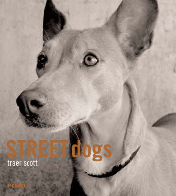 Street Dogs by Traer Scott image