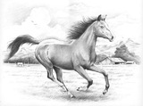 Reeves Sketching by Numbers - Galloping Horses