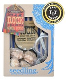 Seedling: Let's Rock! - Geode Kit