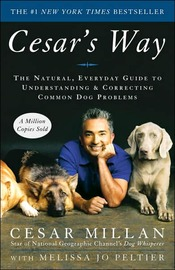 Cesar's Way: The Natural, Everyday Guide to Understanding and Correcting Common Dog Problems by Cesar Millan image
