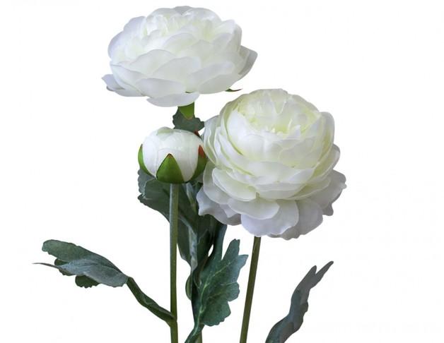 LaVida: Stem Peonies - White (Small)