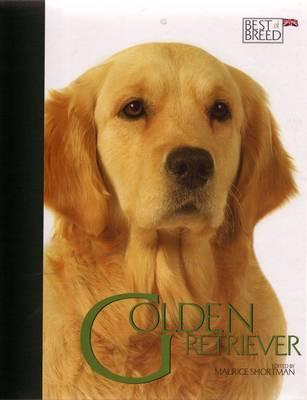 Golden Retriever image