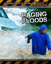 Raging Floods by Louise A Spilsbury