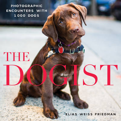 The Dogist by Elias Weiss Friedman
