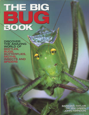 The Big Bug Book by Jen Green image