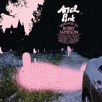 Dedicated To Bobby Jameson by Ariel Pink