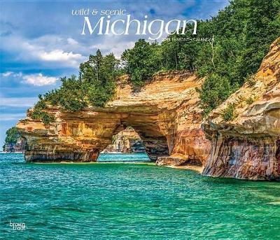 Michigan Wild & Scenic 2019 Deluxe by Inc Browntrout Publishers image