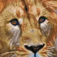 Diamond Dotz: Facet Art Kit - Serengeti Magic (Intermediate)