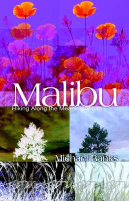 Malibu by Michael Banks image