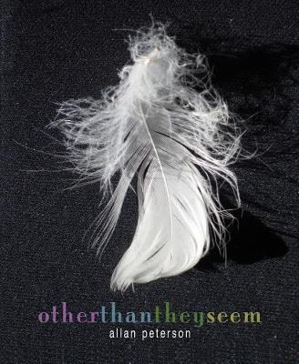 Other Than They Seem: Poems by Allan Peterson image