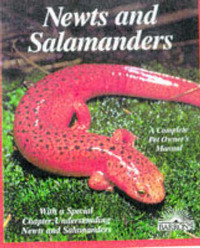 Newts and Salamanders by Frank Indiviglio image