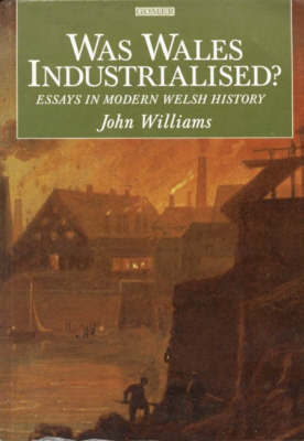 Was Wales Industrialised?: Essays in Modern Welsh History by John Williams