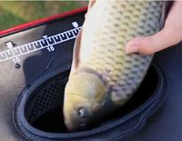 Ape Basics Collapsible Waterproof Fishing Live Bait Bucket - 35L
